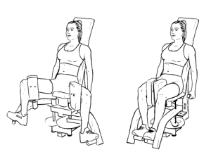 Hip Adductor/Abductor